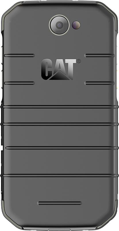 cat_s31_black_back_001.jpg