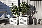 Blomsterkasse Elan 60 Hvit 60X60X60 Cm
