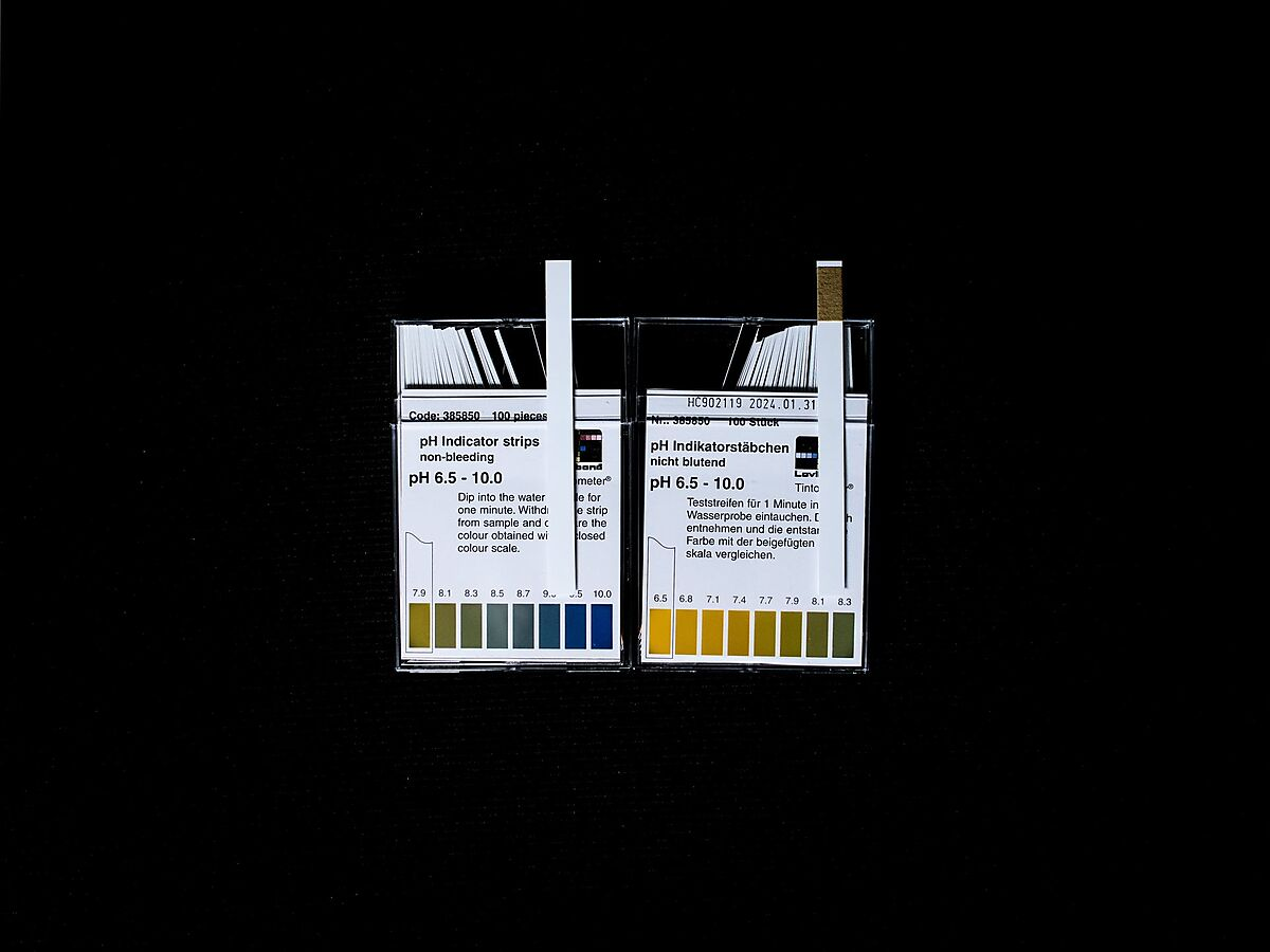 555706 pH test strip