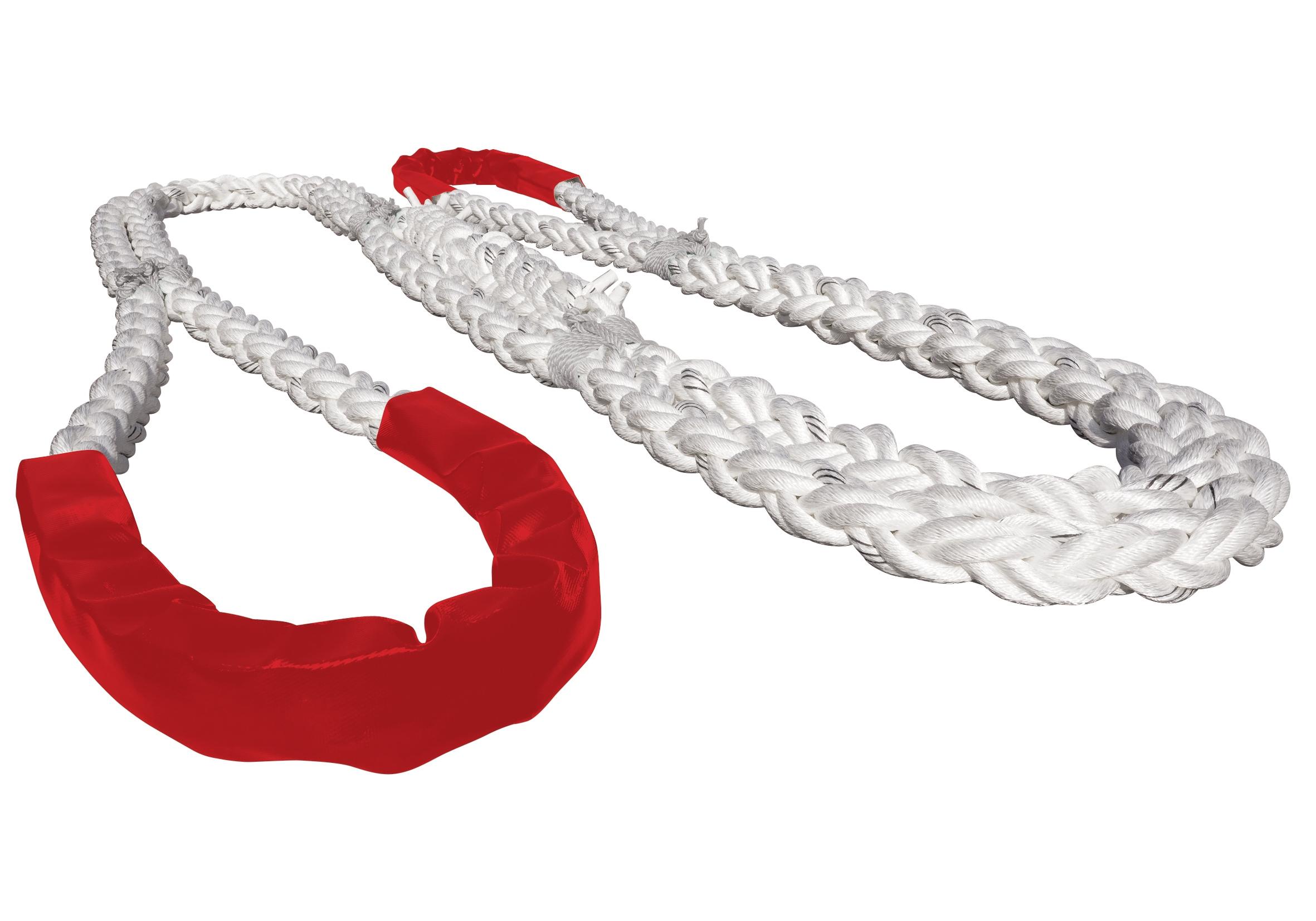 TSM-ringtail-red-sh
