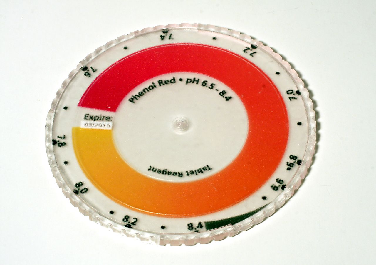 Phenol-Red-pH-Disc